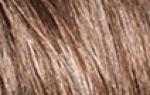 Палитра красок для волос: оттенки темно-рыжего цвета Гарньер, яркий Ээстель, окрашивание Паллет