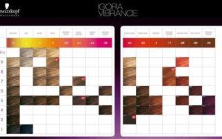 Игора — краска для волос: палитра цветов для седых людей и инструкция по применению