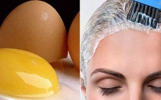 Яичная маска для волос в домашних условиях: сколько держать из желтка и как сделать из яйца для восстановления?