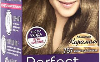 Краска-мусс для волос: палитра цветов и красящая пенка Шварцкопф Перфект, отзывы о 400, 500, 600
