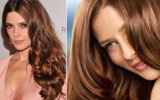 Хна для волос: оттенки басмы, пропорции для рыжего и окрашивание оттеночной в шоколадный цвет