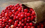 Маски из клюквы для лица в домашних условиях: простые рецепты и отзывы женщин