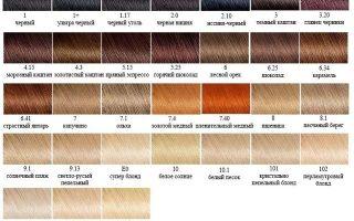 Состав краски для волос: какой процент оксида в Гарньер, из чего состоит кислотная и бытовые средства?