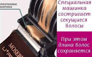Как убрать секущиеся кончики: что делать если секутся волосы по всей длине, как избавиться в домашних условиях?