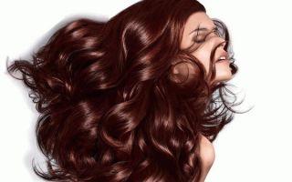 Краска для волос Палет: палитра оттенков и цветов, оттеночный бальзам и отзывы о безаммиачной фитолинии