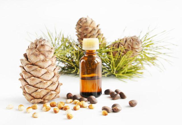 Масло чайного дерева от грибка ногтей: лечение, отзывы, применение, рецепты