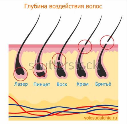 7 мужских кремов для депиляции интимных зон и волосков на теле - rica for men, Риванол, tanita for men, veet, collistar men, cliven young