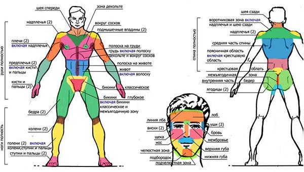 Мужской шугаринг в паховой области, глубокое бикини, нос, усы, борода и щетина, подмышки, спина, грудь, ягодицы, голова; чем отличается мужской шугаринг от женского; как делают мужскую депиляцию сахаром; особенности проведения процедуры для мужчин