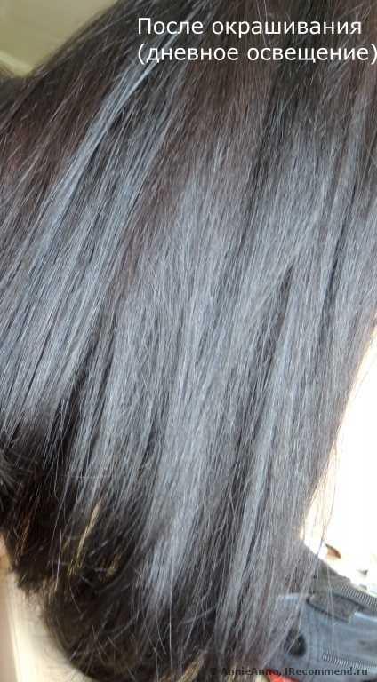 Масло для окрашивания волос: масляная основа, отзывы о профессиональной краске без аммиака constant delight (Констант Делайт)