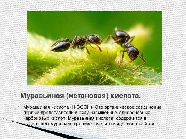 Тингл-эффект: что это такое, лучший крем для солярия, отзывы, tingle bell для загара с муравьиной кислотой, средство soleo (Солео), hot
