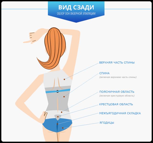 Эпиляция зоны s - это какая зона, какие еще области на теле подлежать депиляции: можно ли эпилировать руки, межъягодичную зону, голени