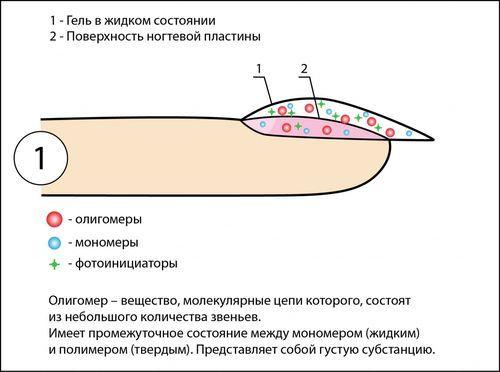 Состав лака для ногтей: из чего делают гель, детский вид состоит, сделан химический